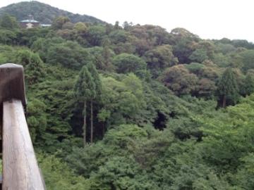 20120625-060646.jpg